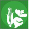 Icono semillas