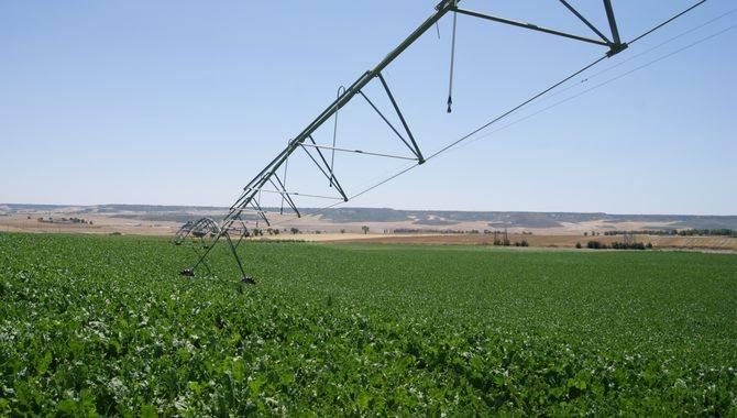 A partir de la PAC 2018 estará prohibido el uso de fitosanitarios en superficies 'greening'